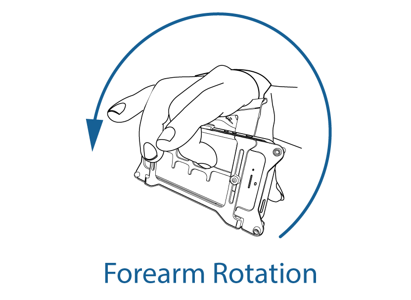 forearm-rotation.png